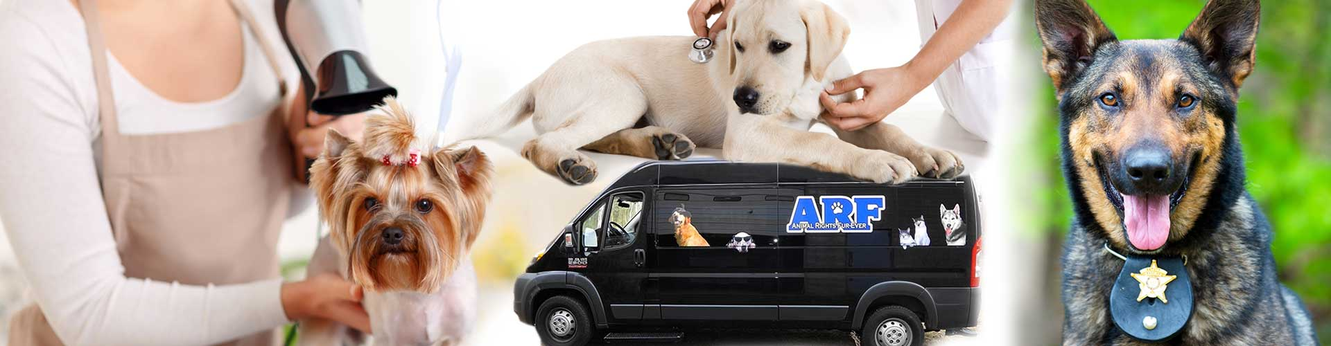 Air conditioning and heating climate control for animal and pet transport